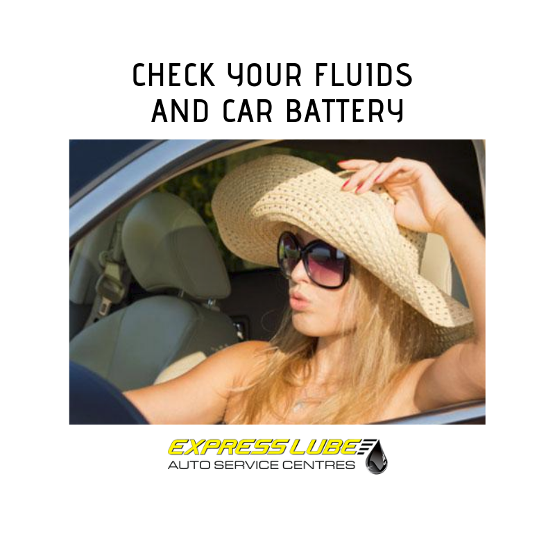 Check your fluids and car battery