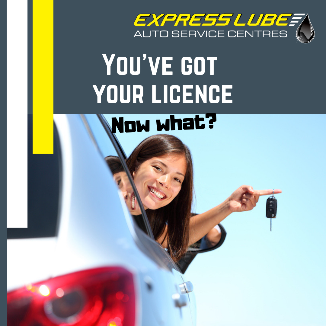 You've got your licence – now what?