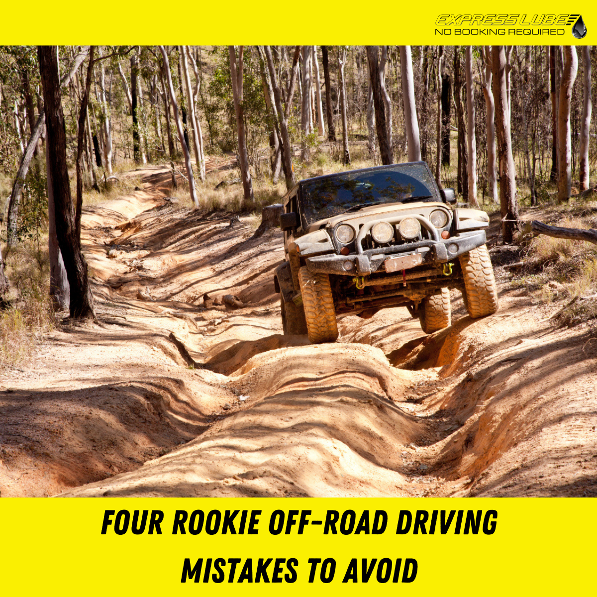 Express Lube - Rookie off road driving mistakes to avoid